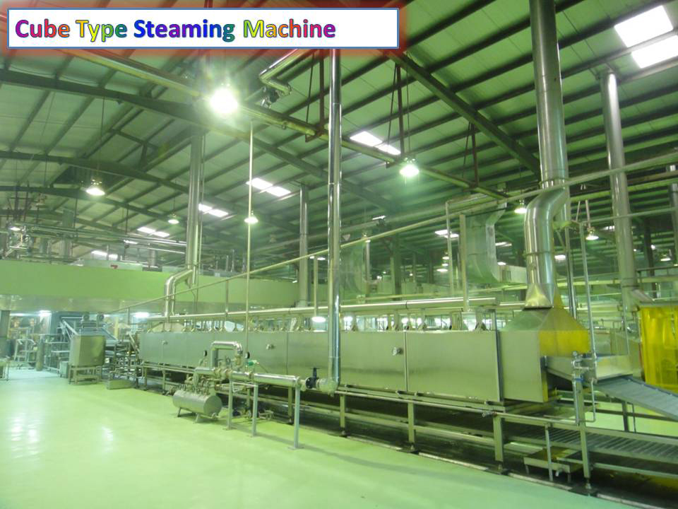 Cube Type Steaming Machine